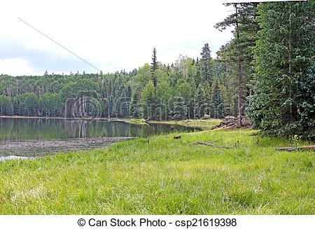 Stock Photographs of Drift Fence Lake Fishing spot.