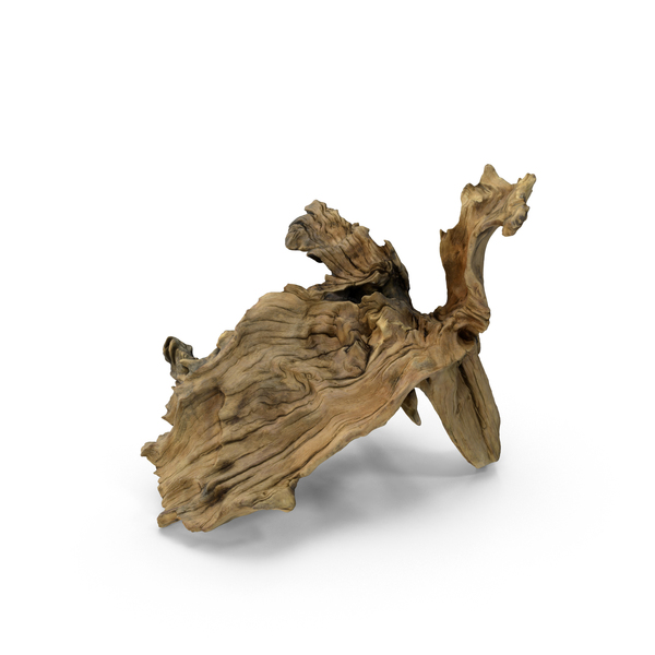 Driftwood PNG Images & PSDs for Download.
