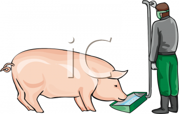 Clipart of a Pig At an Eating Trough.