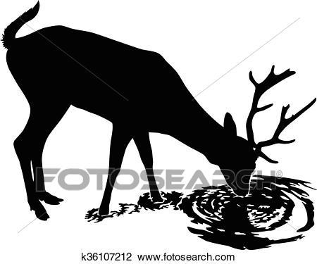 Deer drinks water Clipart.