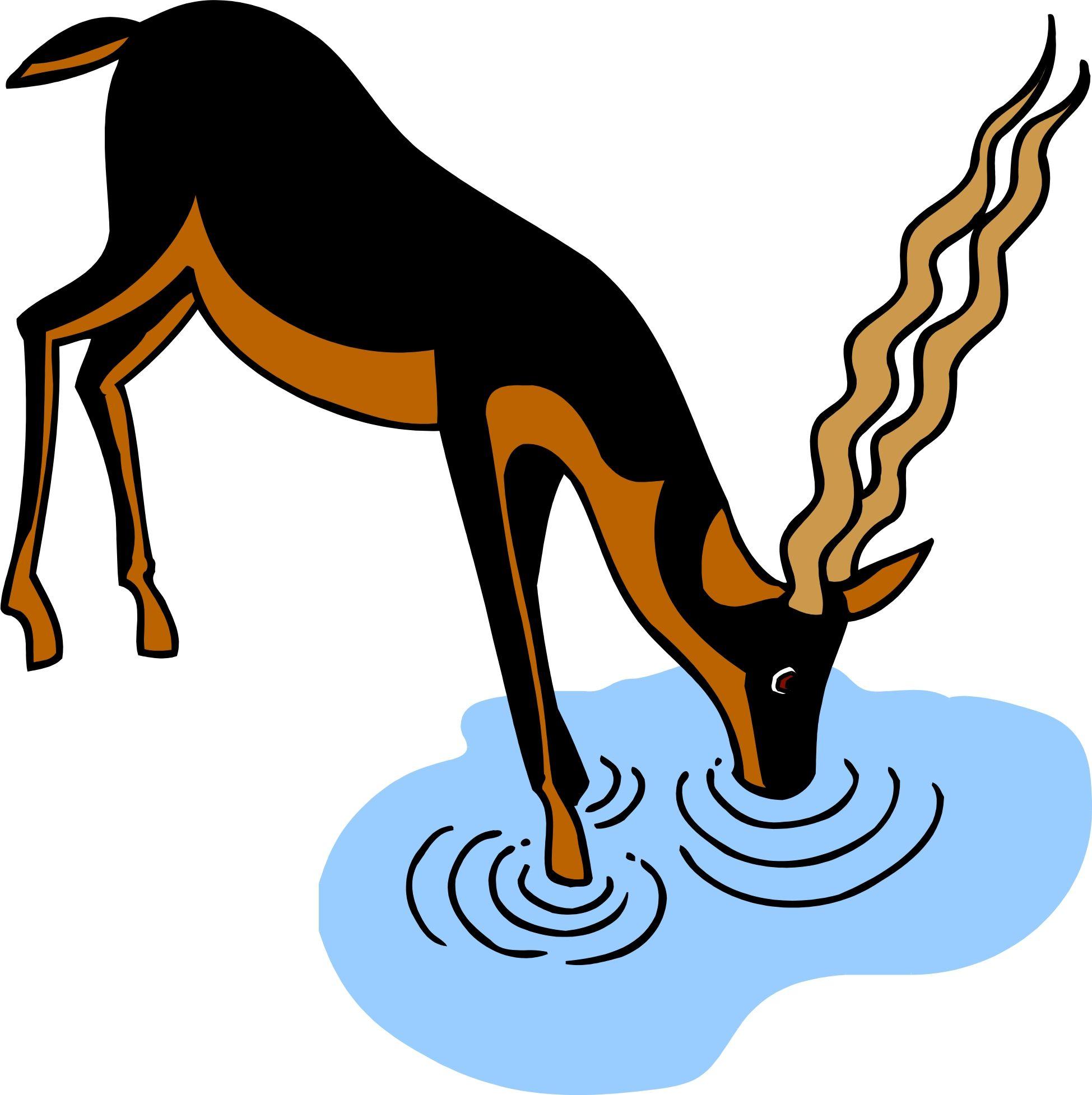 Deer drinking water clipart.