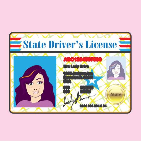 506 Drivers License Stock Vector Illustration And Royalty Free.