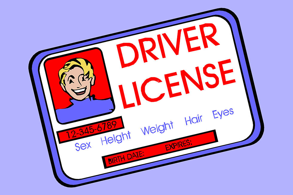 Drivers license clipart driver\'s license, Drivers license.