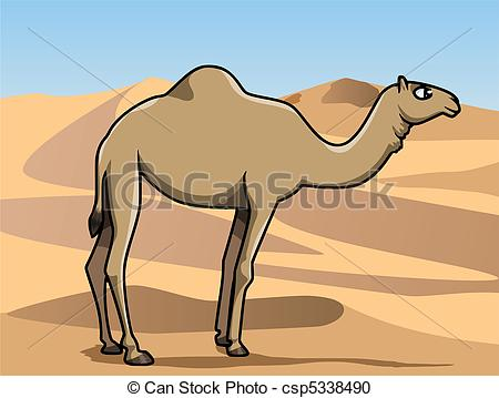 Vector Clipart of Dromedary in the desert.