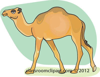 Camel Large Size Clipart.