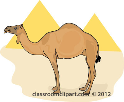 Camel Clipart : Camel_in_front_of_egypt_pyramids_212 : Classroom.