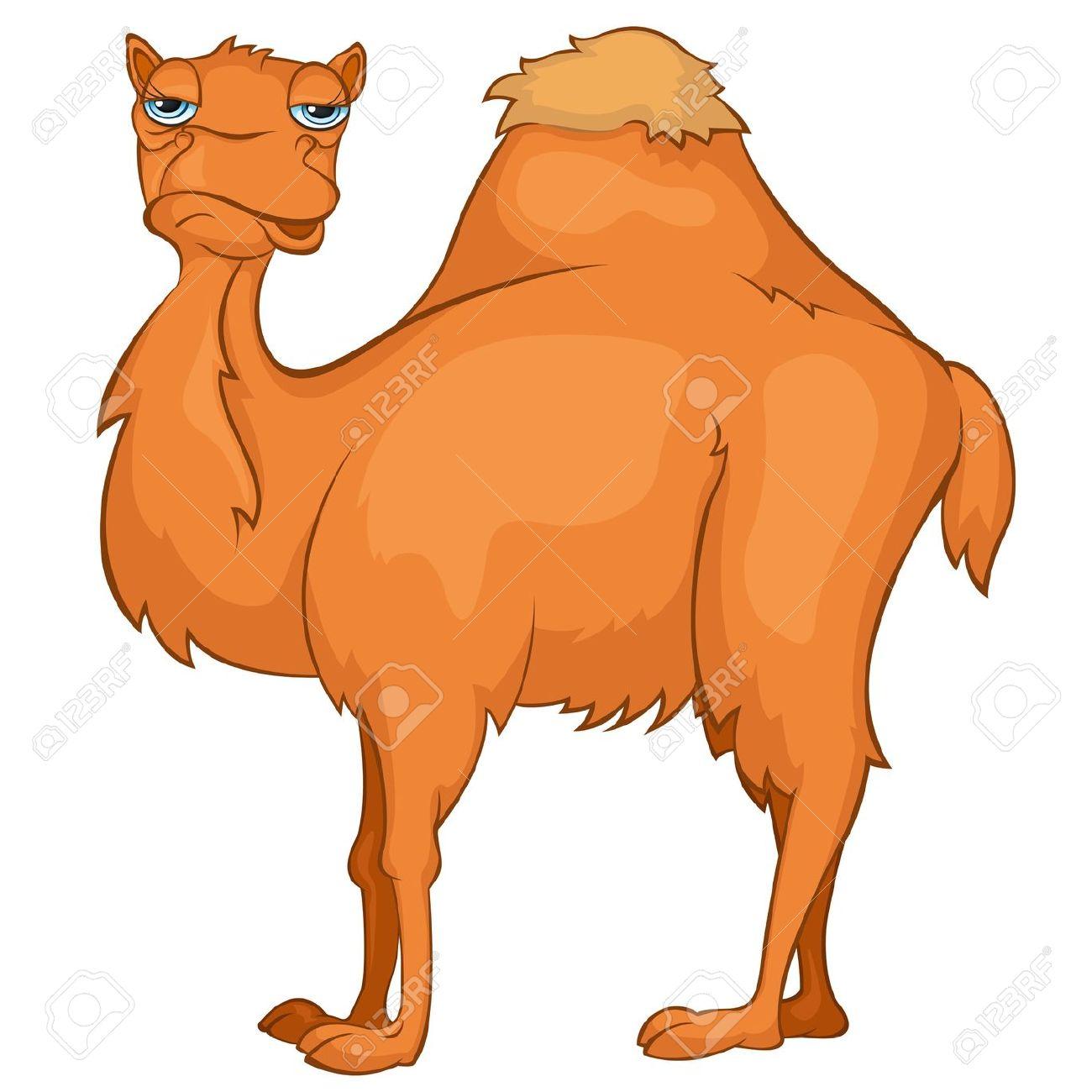 Cartoon Character Camel Royalty Free Cliparts, Vectors, And Stock.