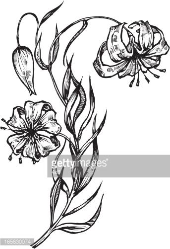 6+ Drooping Flower Clip Art.