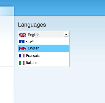 Language Switcher Dropdown.