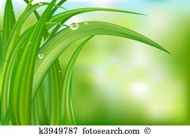 Morning dew Clipart and Illustration. 229 morning dew clip art.