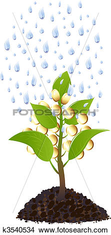 Clipart of Money plant with rain drops k3540534.