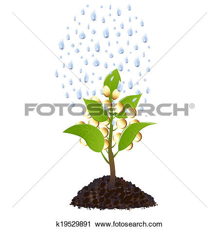 Clipart of Money plant with rain drops k19529891.