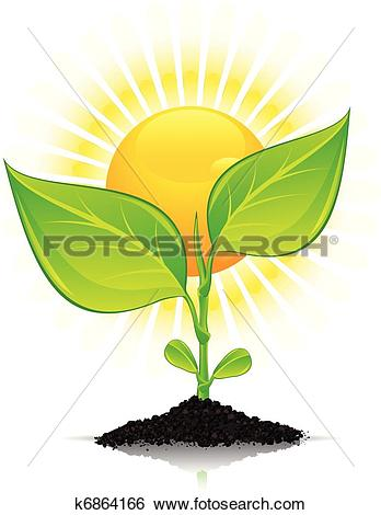 Clip Art of Plant with drops and sun k6864166.