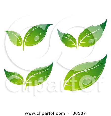Clipart Illustration of a Set Of Four Different Sprouting Green.