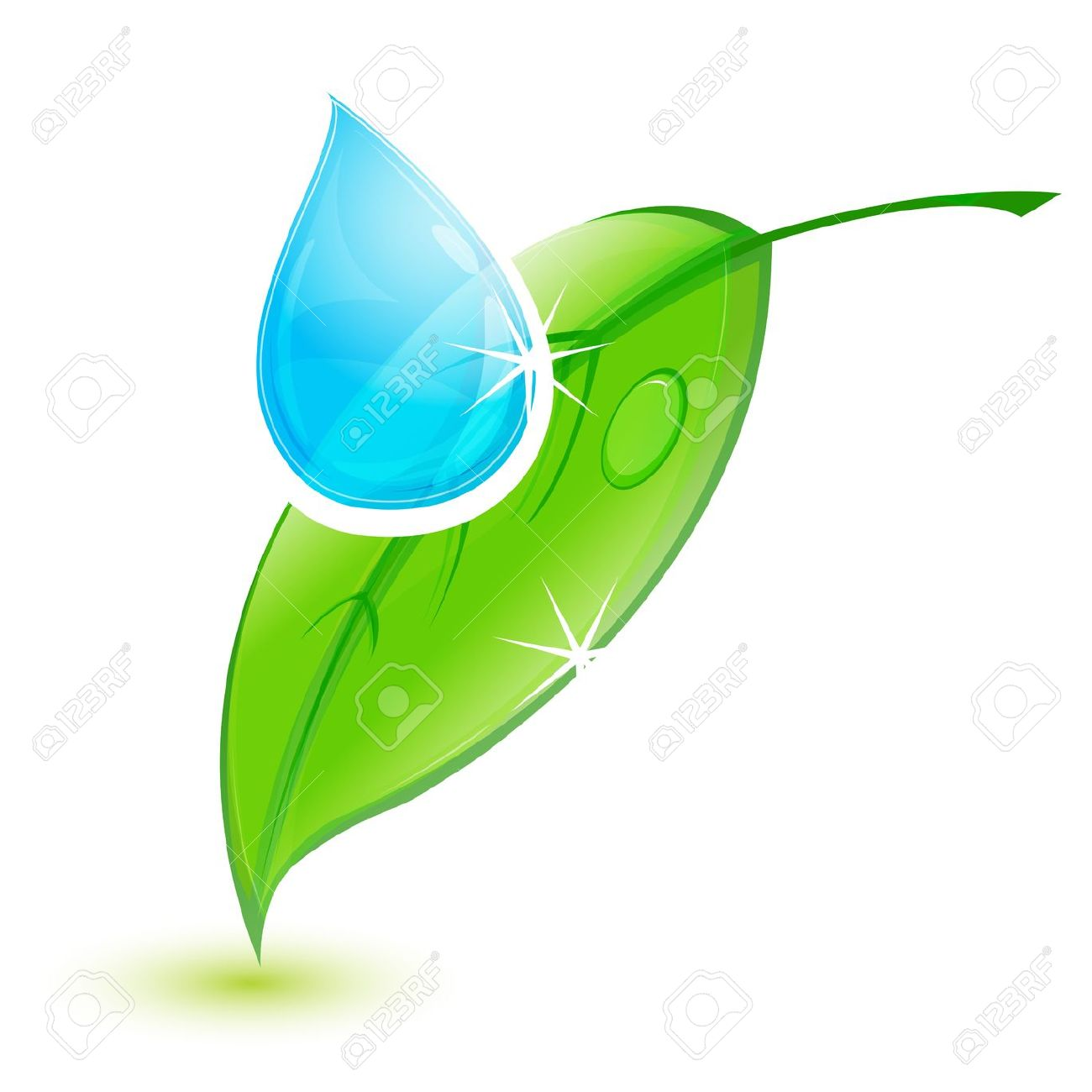 Illustration Of Leaf With Water Drop On White Background Royalty.