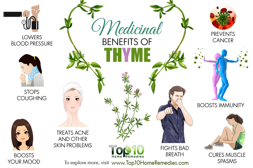 10 Medicinal Benefits of Thyme.
