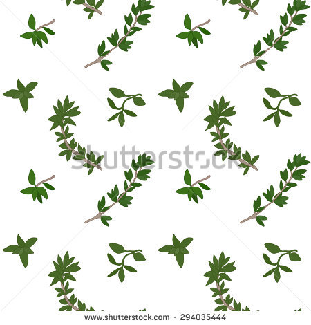 Hand Drawn Vector Seamless Pattern Herbs Stock Vector 317301338.