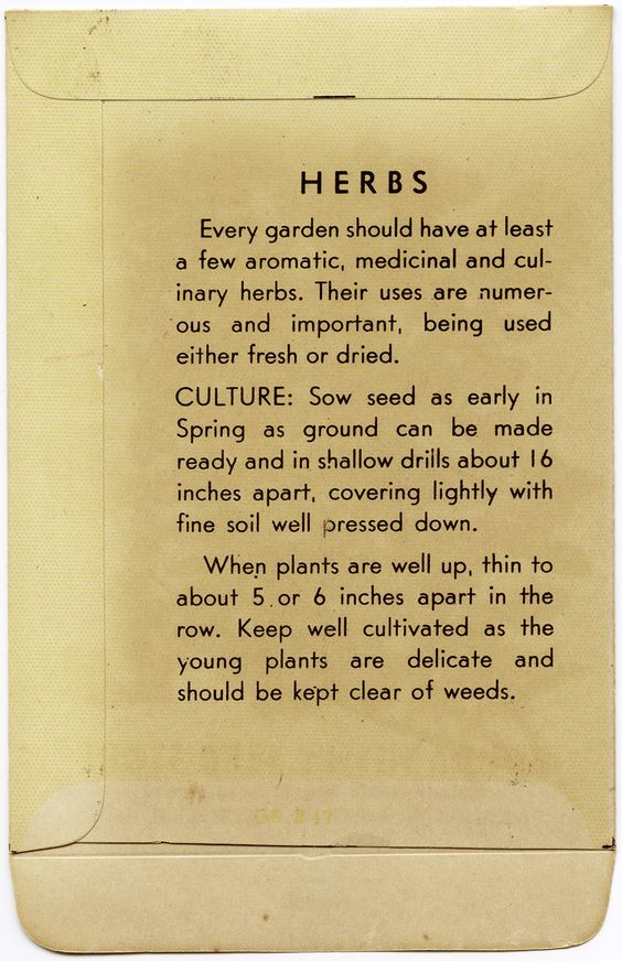 vintage seed packet, thyme seed envelope, gardening clipart.