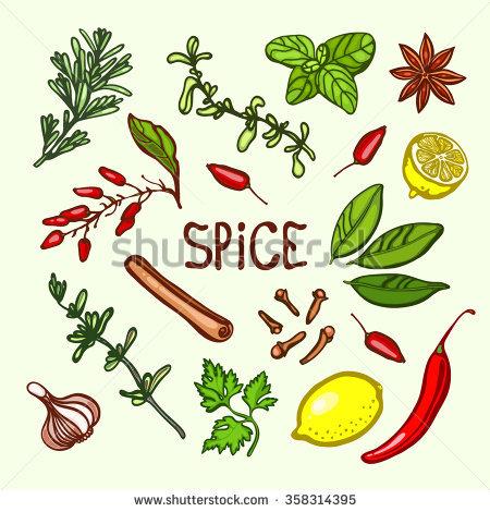 Herbs And Spices Banco de vetores, imagens e artes vetoriais.