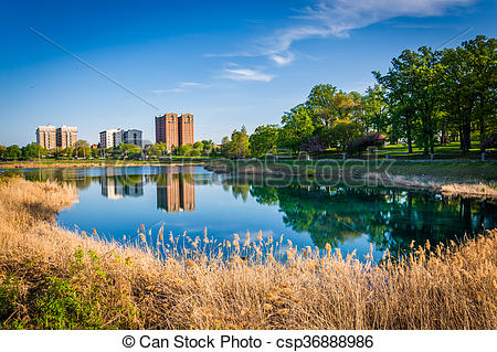 Pictures of Grasses and buildings along Druid Lake, at Druid Hill.