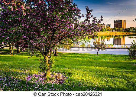Stock Photo of Colorful trees and view of Druid Lake in Druid Hill.