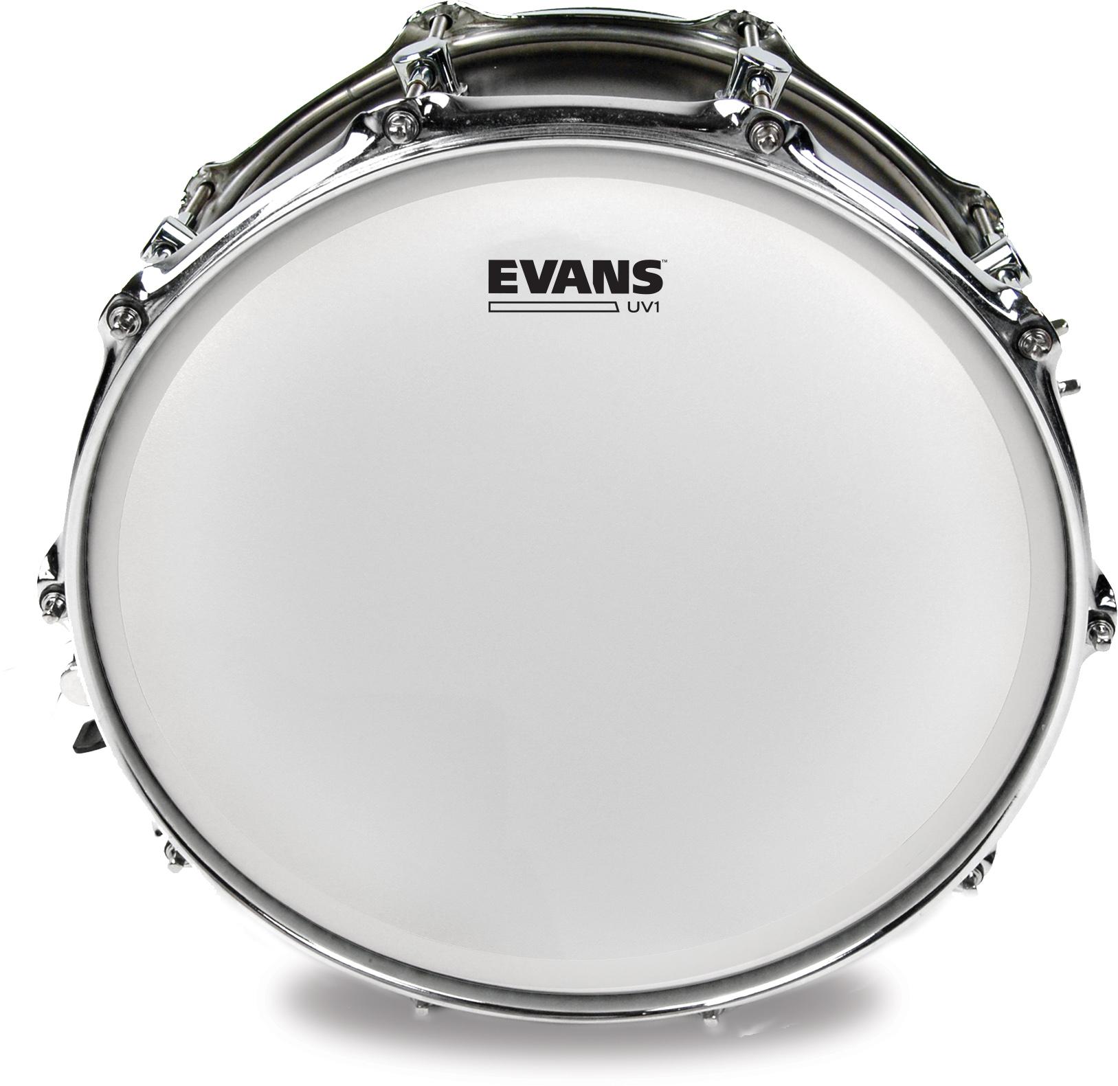 Evans Drumheads : News.
