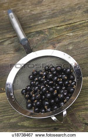 Picture of Blackberry, Fresh Fruit, Food And Drink, Drupes.