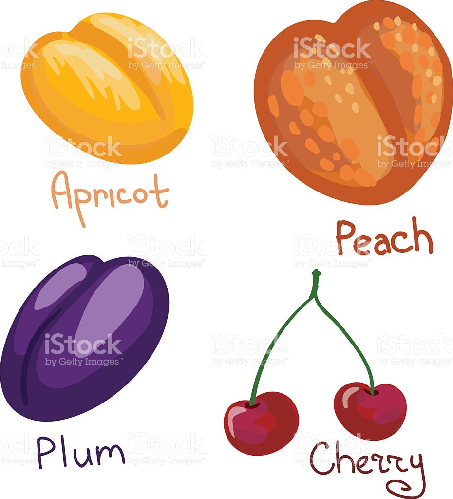 Set Of Four Colorful Drupes stock vector art 468277156.