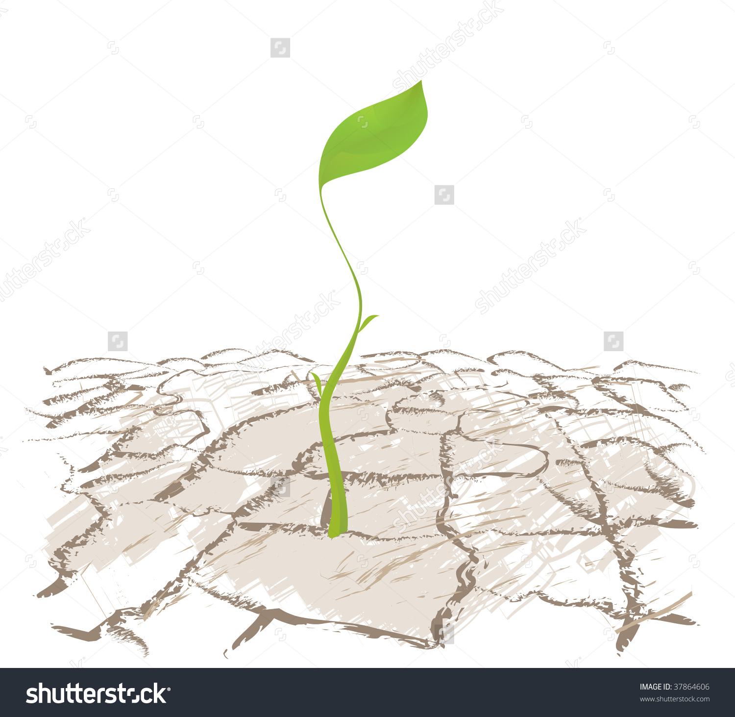 Small Sprout Plants Dry Land Stock Vector 37864606.