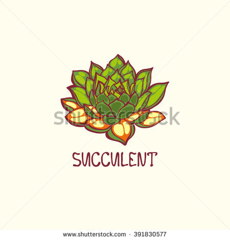 Hardy Succulent Stock Photos, Royalty.