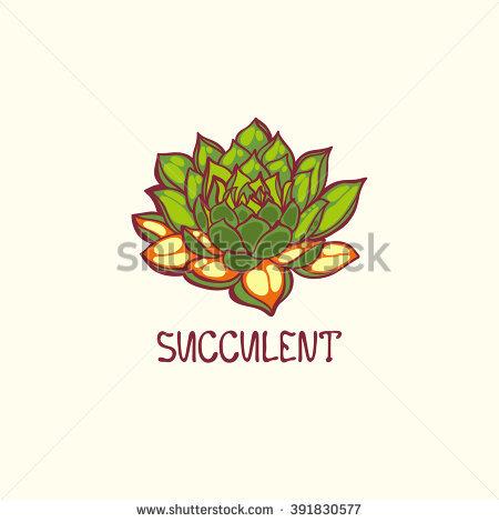 Hardy Succulent Stock Photos, Royalty.
