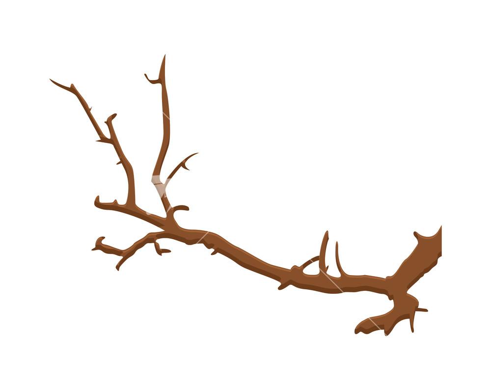 Dry Branch.
