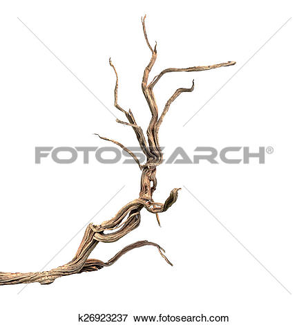 Picture of Dry branch k26923237.