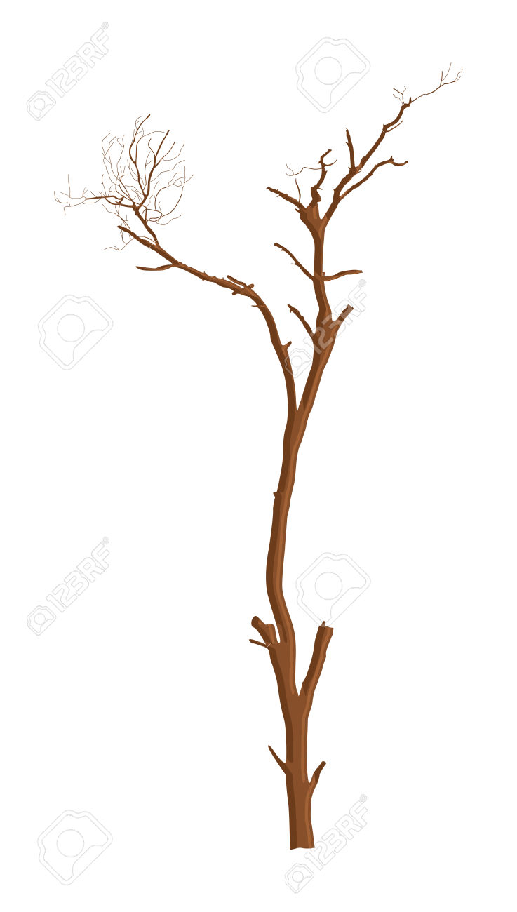 Dry Branches Royalty Free Cliparts, Vectors, And Stock.