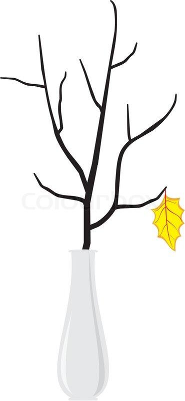 Dry branch of the tree in an elegant white vase.
