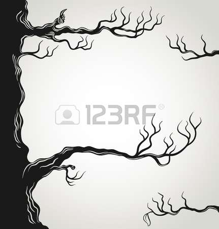 3,816 Dry Environments Stock Vector Illustration And Royalty Free.