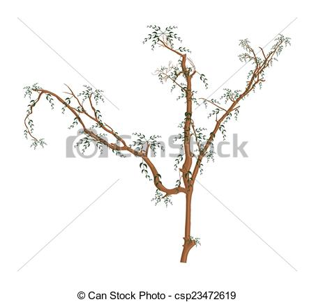 Vector Clip Art of Dry Leaves Branches.