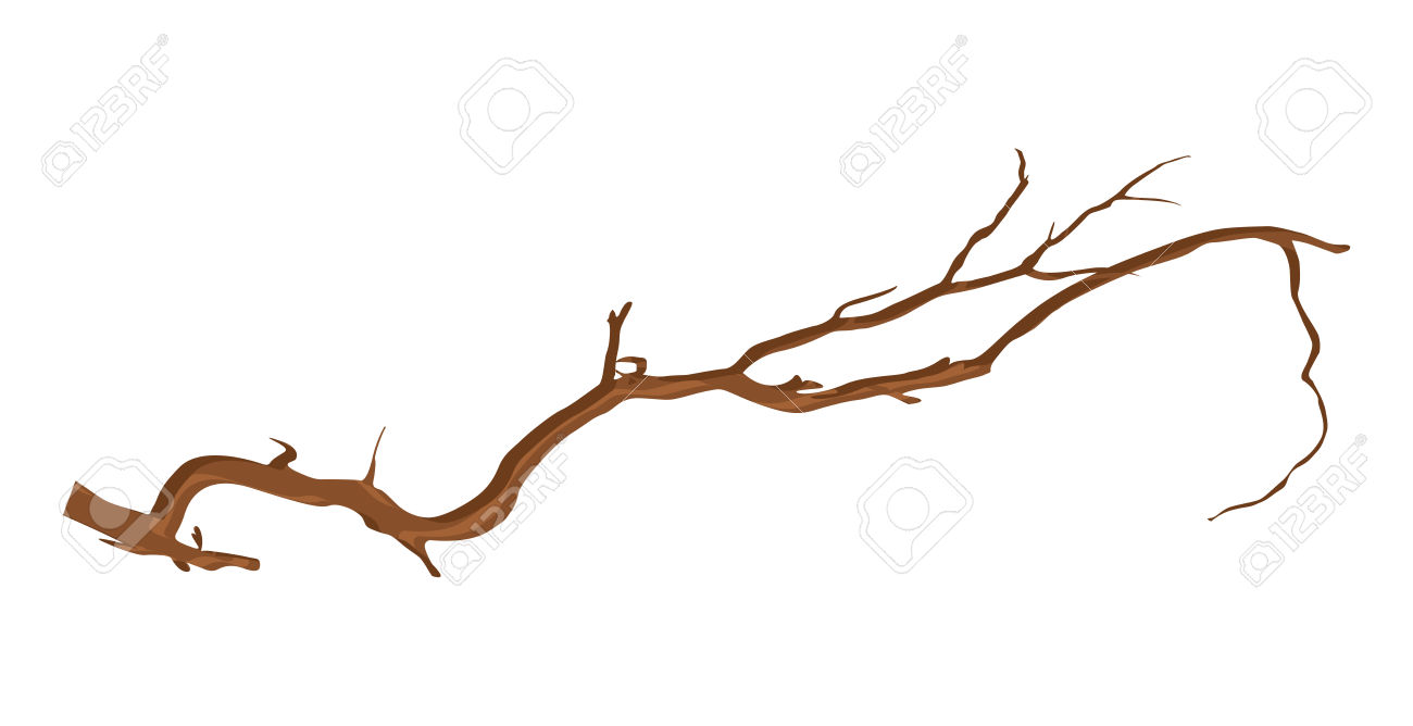 Dry Tree Branch Royalty Free Cliparts, Vectors, And Stock.