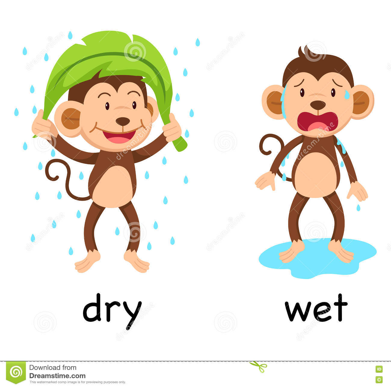 Wet and dry clipart.