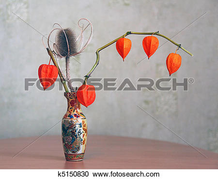 Stock Photography of Composition for an interior from dry elements.