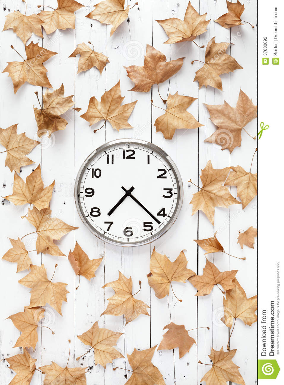Clock With Leaves Vertical Composition Stock Photography.