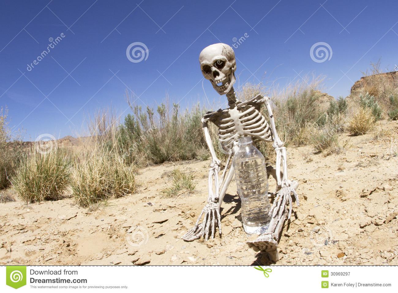 Skeleton Water Desert Royalty Free Stock Photography.