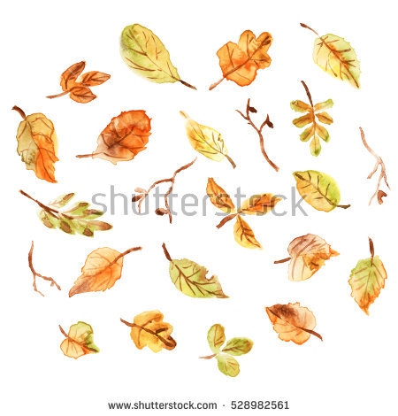 Oil Paint Dry Fall Leaf Kuril Stock Illustration 412096951.