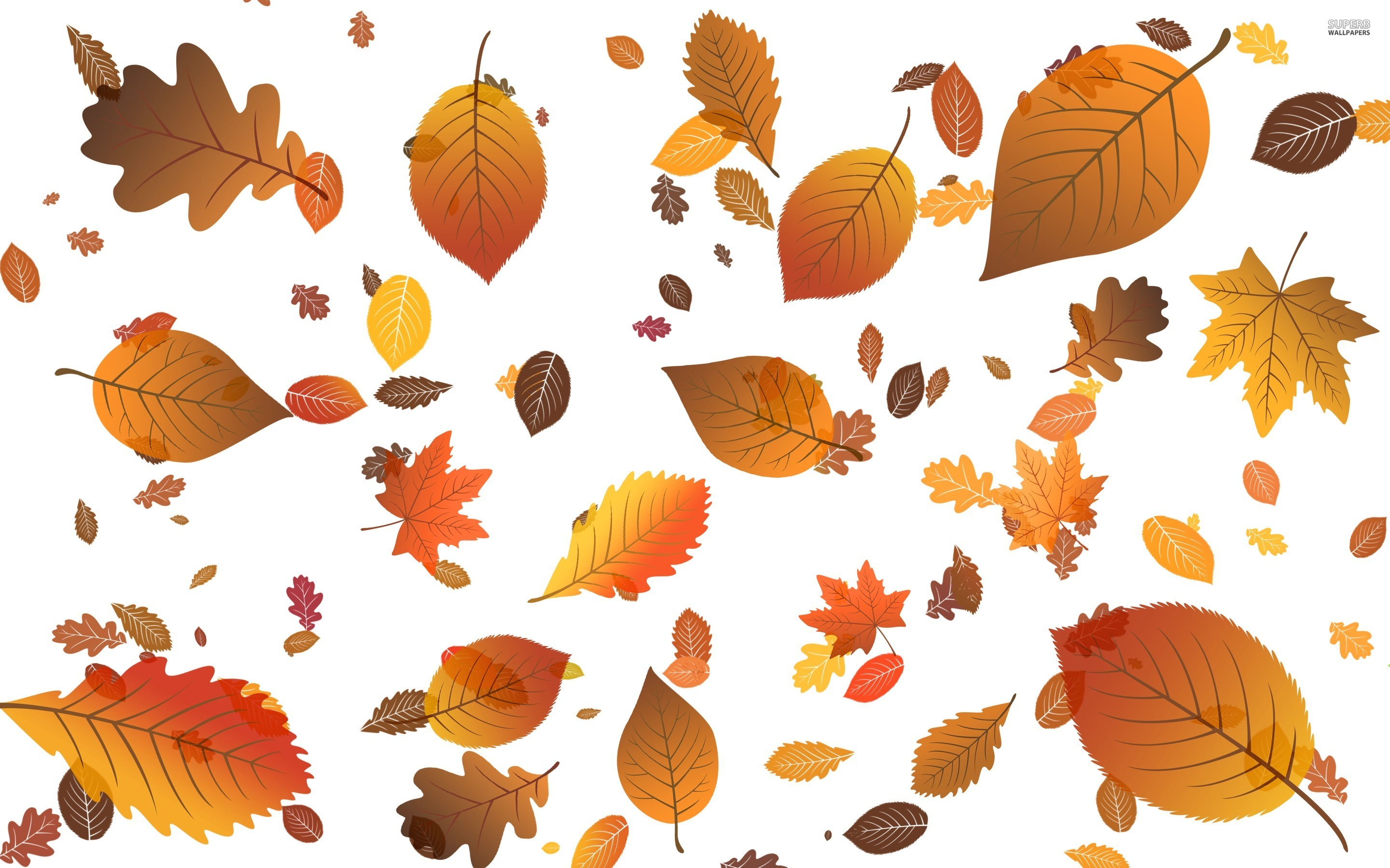 1000+ images about fall leaves on Pinterest.