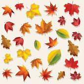 Dry Fall Clip Art, Vector Images & Illustrations.