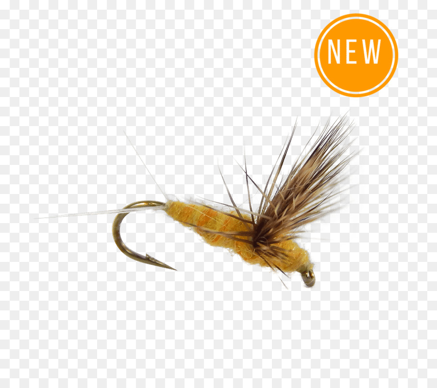 Trout clipart dry fly, Trout dry fly Transparent FREE for.