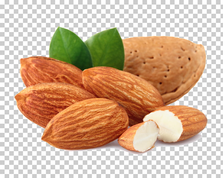 Almond Nut Dried Fruit , Almond Transparent s PNG clipart.