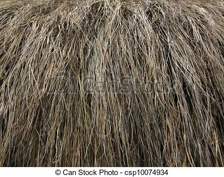 Stock Photos of Dry Grass Roof Close.