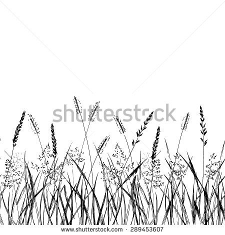 Bunch Sprig Lavender Flower Black Silhouette Stock Vector.