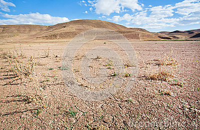Sand Hills In The Distance Of The Desert Valley With Dry Soil.